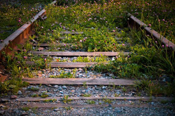 Green Railway