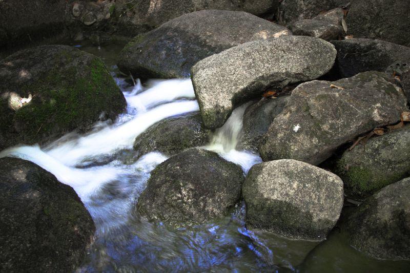 Among Rocks