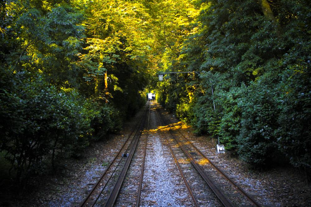 Railroad Path