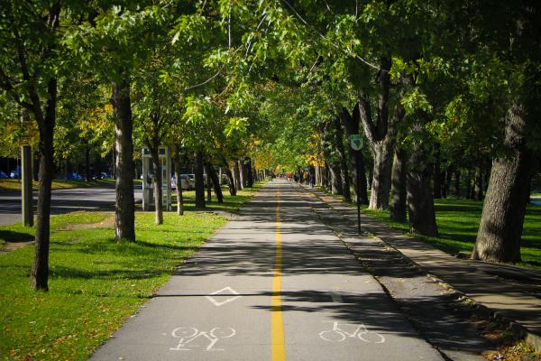 Green Bike Path