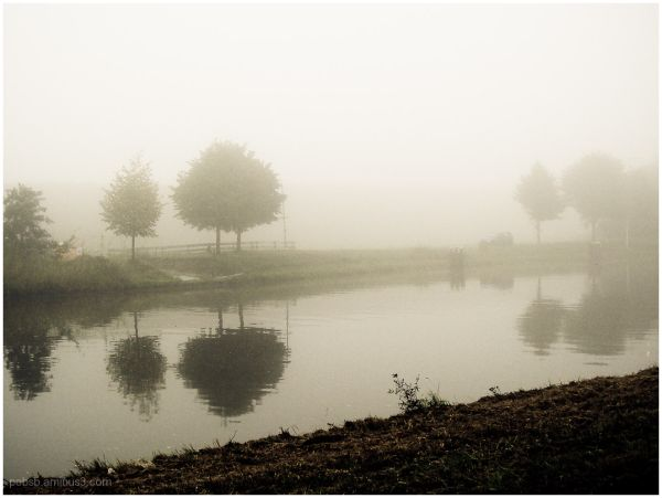 Misty Morning 1