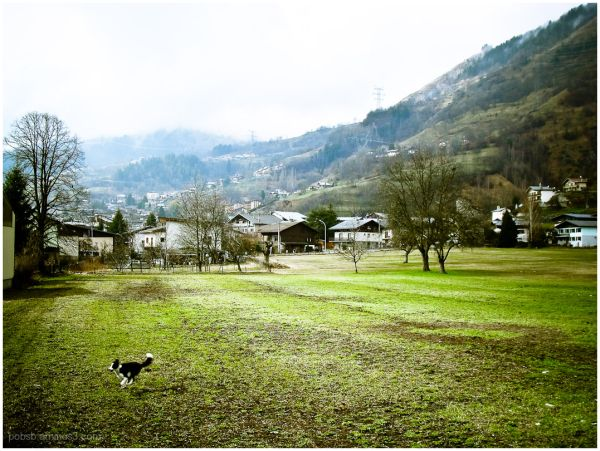 French Alps 9