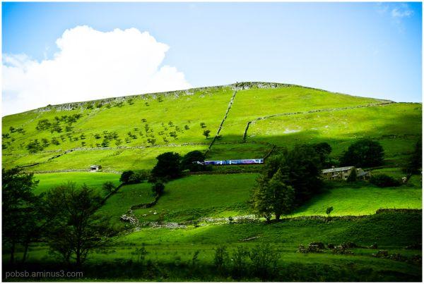 landscape 11