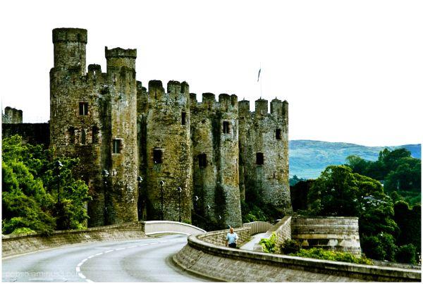Conwy Castle 1