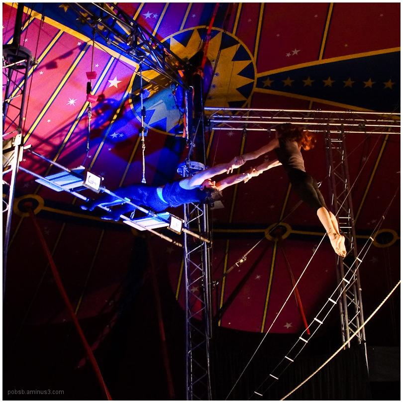circus 11