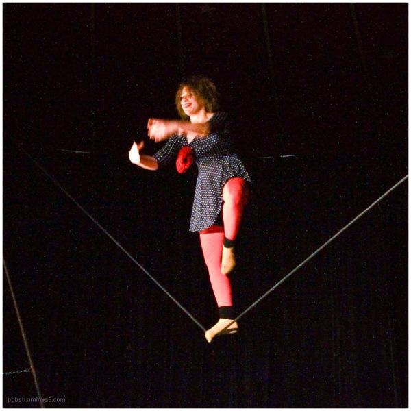 circus 12