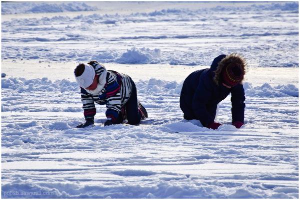 skating fever 5