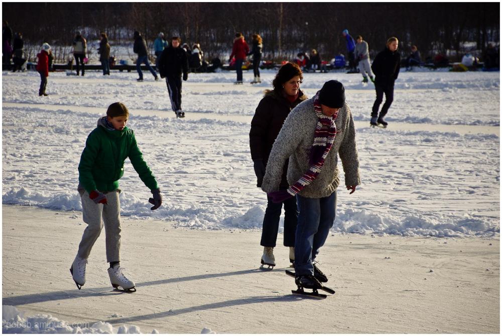 skating fever 7