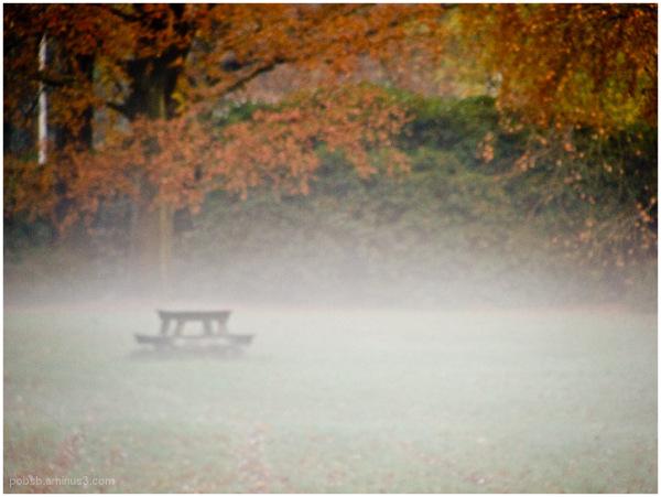 a foggy day 2