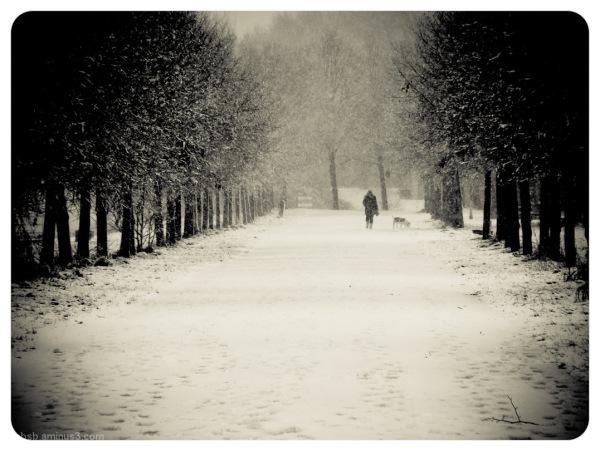 it's winter 2