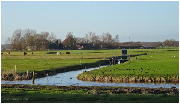 Texel Landscape 3