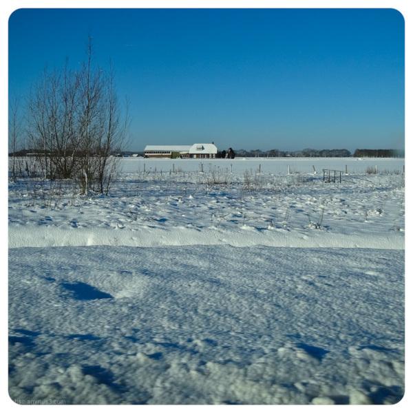 winterwonderland 4
