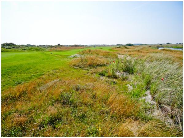 golfcourse 2