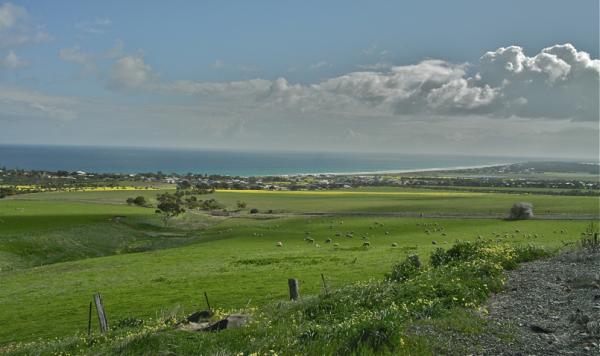 Fields go to the seashore /Zelaiak itsasertzeraino