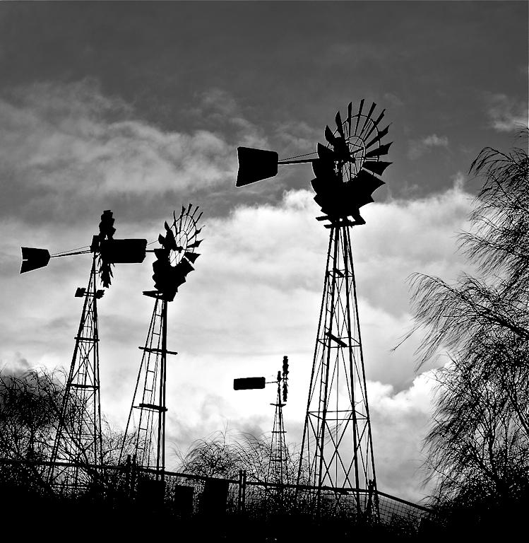 Wind mills/Haize errotak zuri beltzean