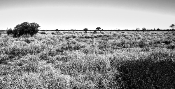 Basamortua/Desert