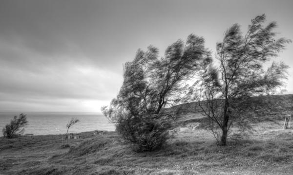 Itsasotiko haizea/Sea wind