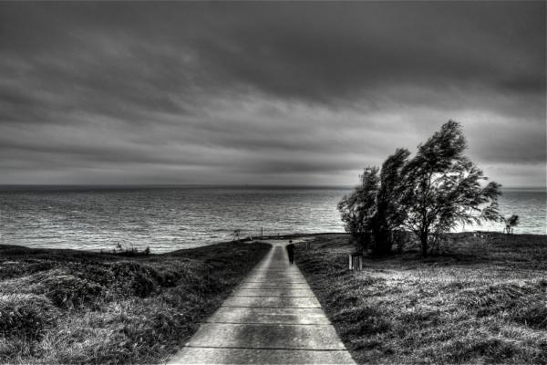 Itsasorantz ibiliaz/Walking to the sea
