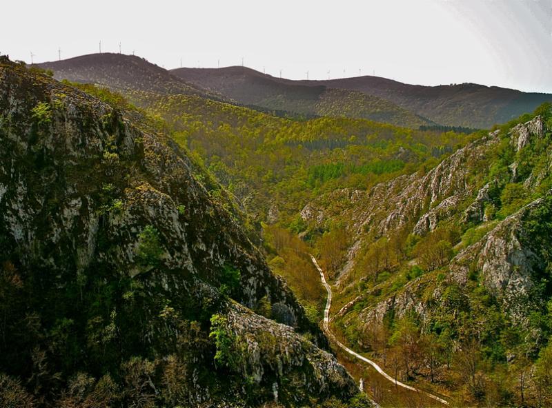 Bidea hartu mendietarantz/Way to the mountains