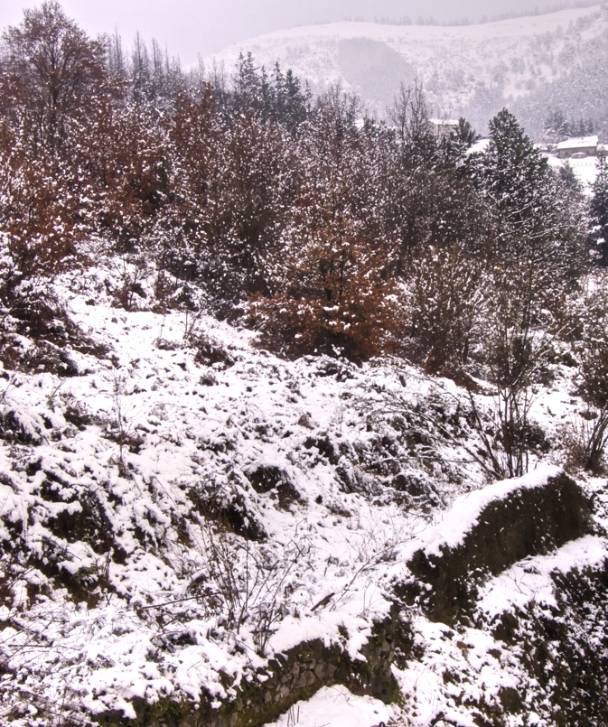 Elurte ederra/Big snowfall