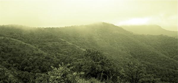 Lanbroa/Fog