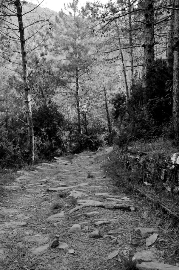 Bide zaharra/Old track