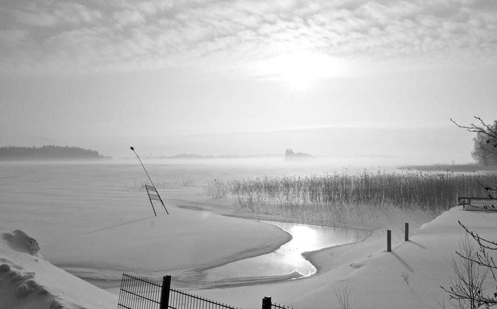 Elur paisaia/Snowy landscape