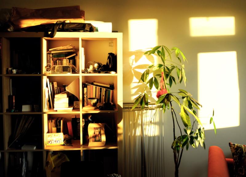 Etxeko apalak/Shelves at home