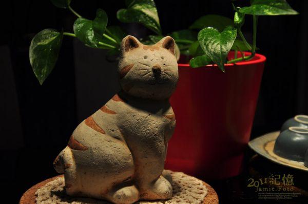20110309  貓貓全家福