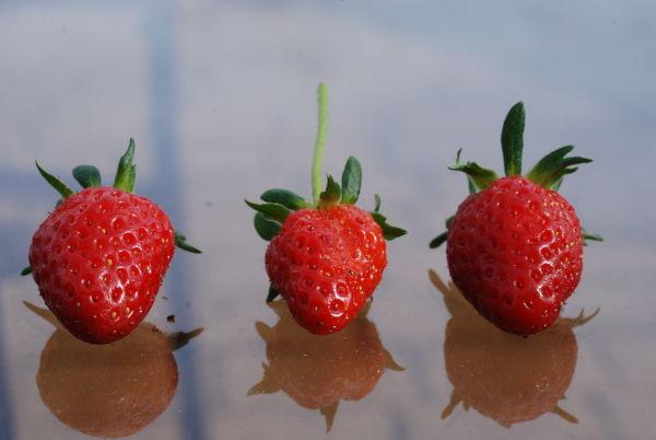 strawberries red fruit
