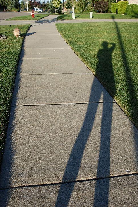 people portrait shadow
