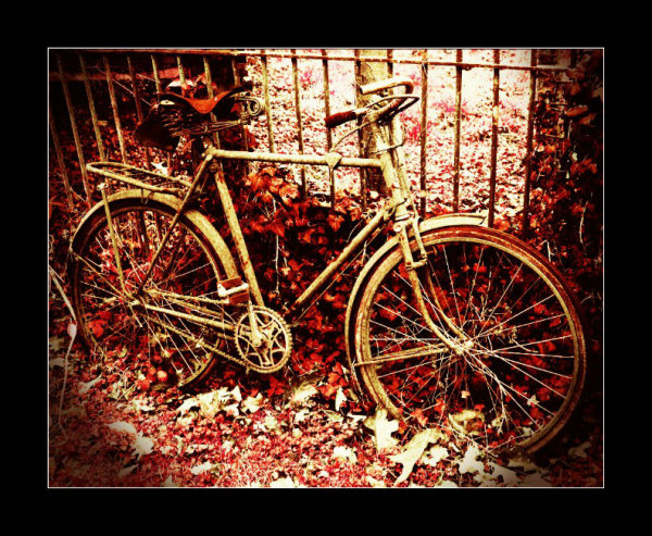 old bikes don't die, they just turn a deeper shade