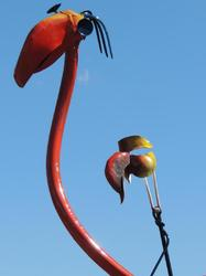 """Drôles d'oiseaux"" de Mich Mao. 7)"