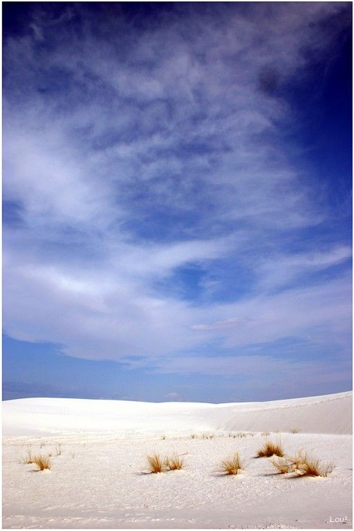 The desert of White Sands in New Mexico