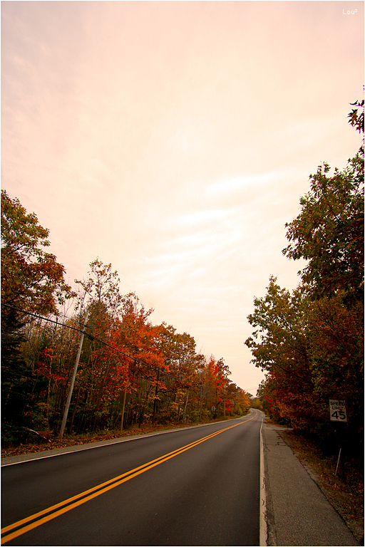 #1001 - A road in Acadia