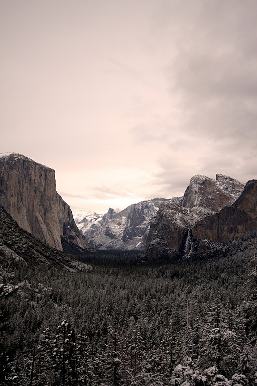 #1040 - Tunnel view