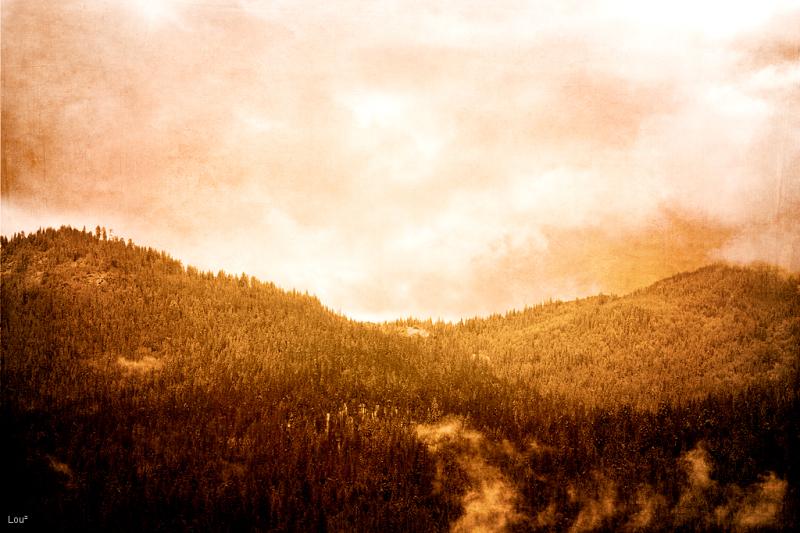 #1043 - Yosemite