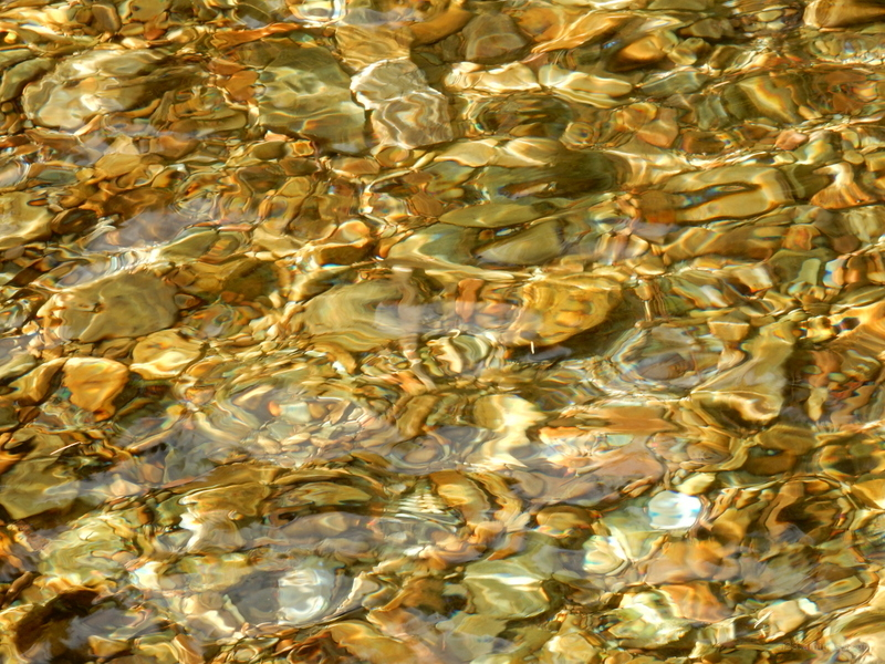 The rocky bottom of a stream through clear water.