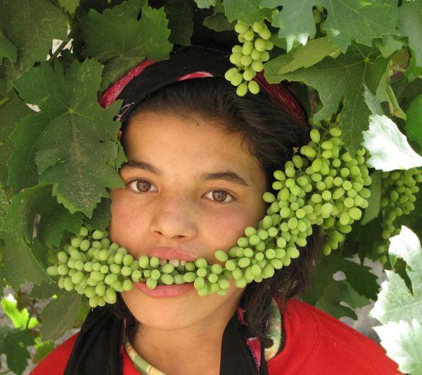 servant and grape!