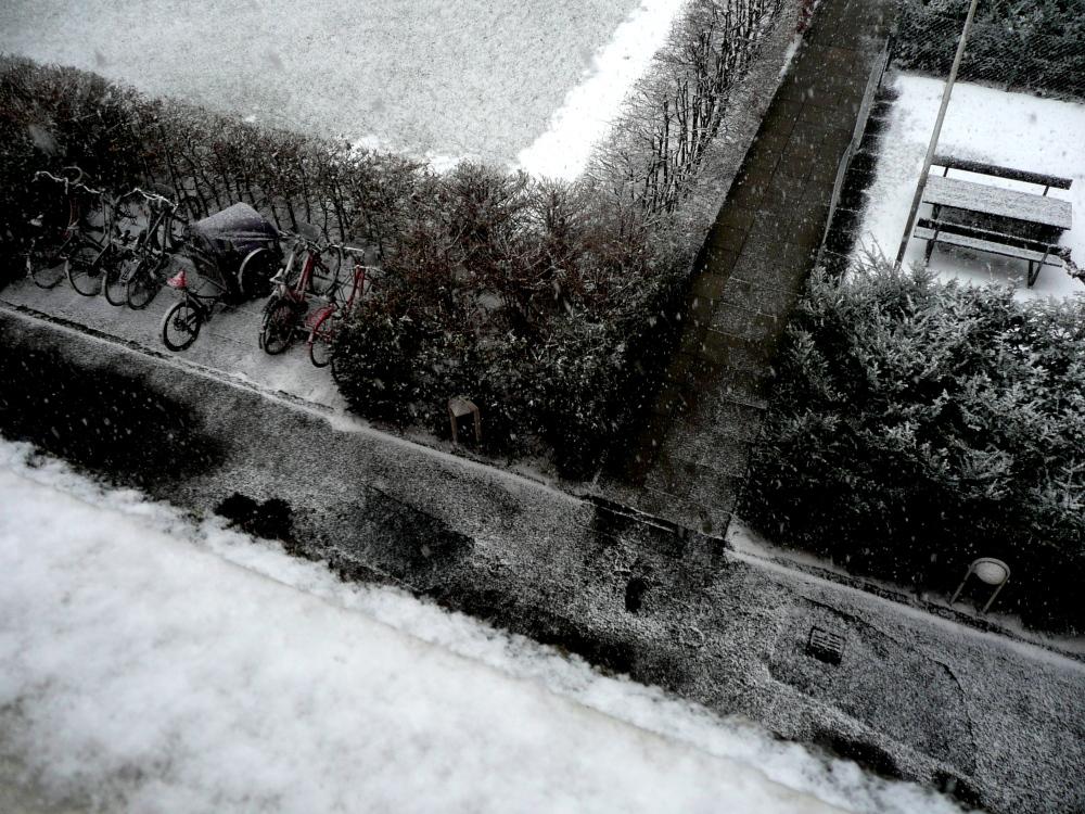 yes, it's still winter