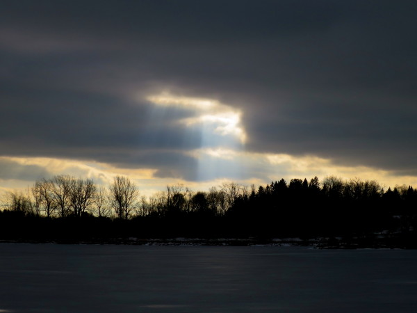 Sunbeam by Dow's Lake
