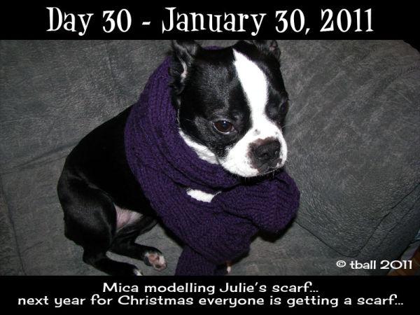 Mica the model...
