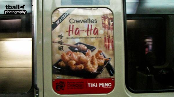 Ha Ha Shrimps