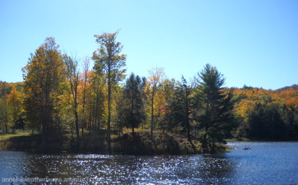 Lake Lustre
