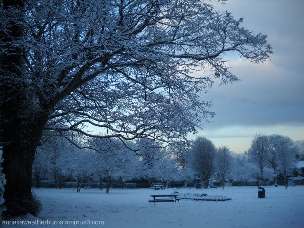 November Snow 2010