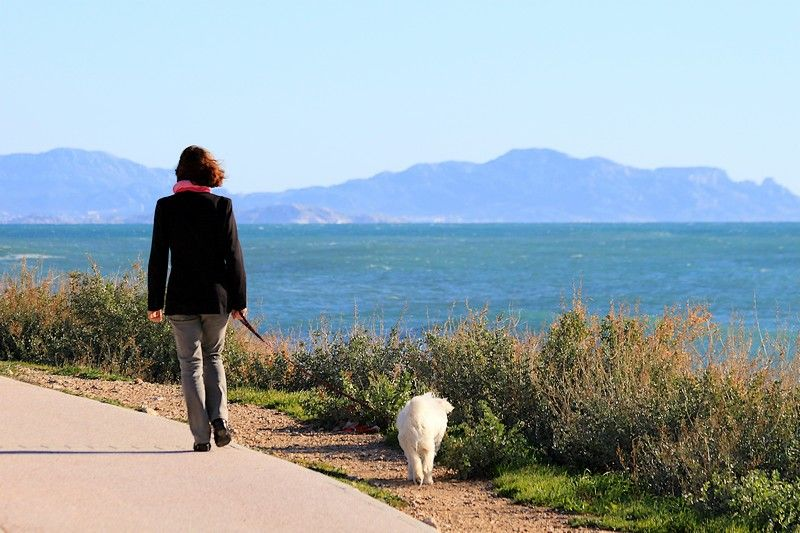 Madame promène son chien...