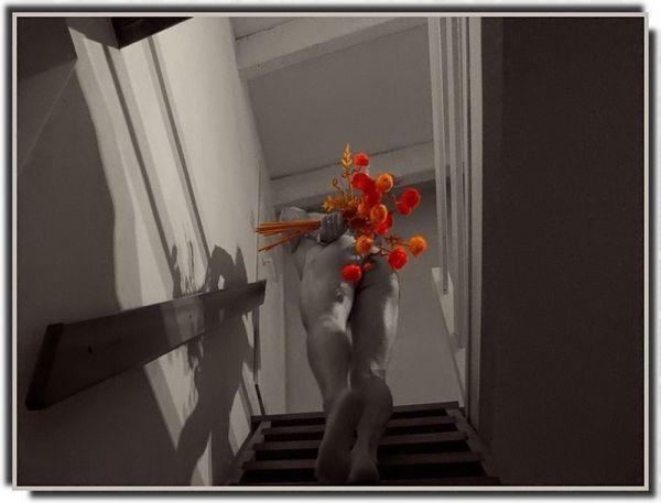 Dites Le Avec Des Fleurs / Say It With Flowers