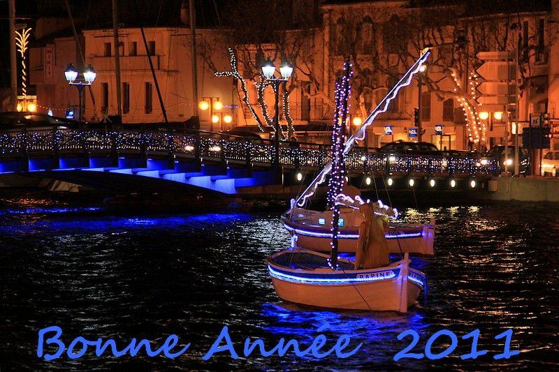 Meilleurs Voeux 2011 !!!
