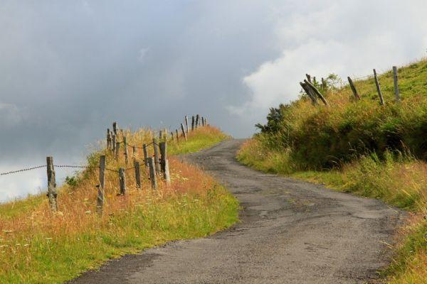 Sur le Chemin Du Retour / On The Way Back
