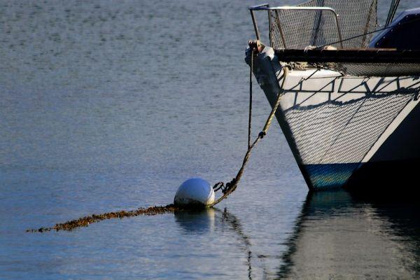 Pêche A La Ligne . / Line Fishing .